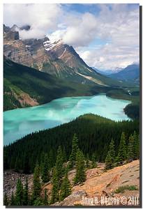 1559_1990009-R4-C4-NCS-Alberta