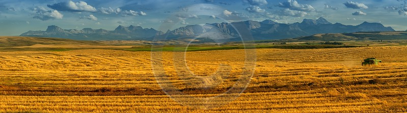 Farmland Pincher Creek Alberta Canada Panoramic Landscape Photography Stock Images Island Town - 017416 - 01-09-2015 - 18024x5024 Pixel