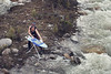 Banff, Icefields - Extreme ironing next to a river, aerial view