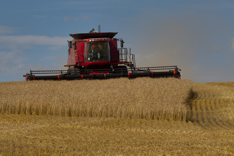 A Combine completes the Wheat harvest in Southwestern Alberta