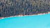 Banff, Peyto - Telephoto abstract of shoreline of lake