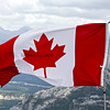 Canadian Flag; Maple Leaf