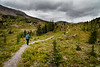 Banff, Sunshine - Woman hiker on trail towards distant pass