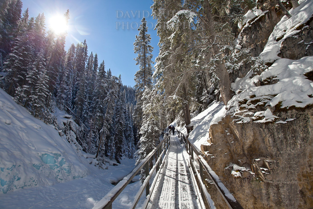 Johnston Canyon Sunny Frozen Path