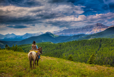 cowboy-alberta
