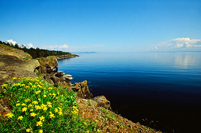 Helliwell Provincial Park, Hornby Island