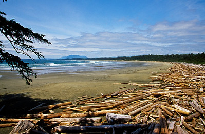 Pacific Rim National Park Reserve - Long Beach Unit