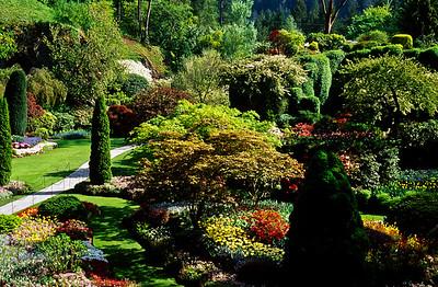Butchart's Gardens