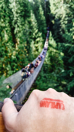 Capilano Suspension Bridge in British Columbia