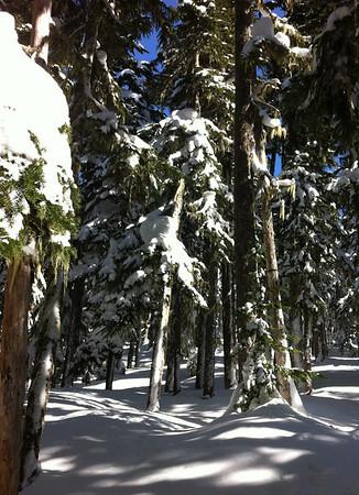Lake Garibaldi Ski Tour - March 2012