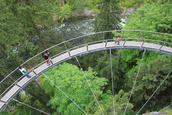 Clift Walk at Capilano Suspension Bridge Park