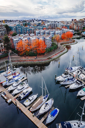 Fall colors in Vancouver, BC