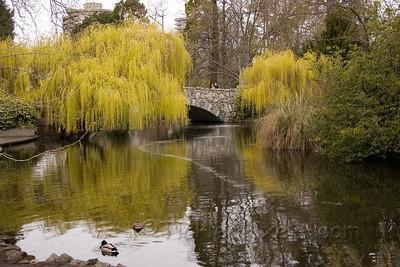 Goodacre Lake in Beacon Hill Park, Victoria, B.C.