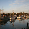 Fishing Boats moored on the dock at Gary Point, Steveston, BC