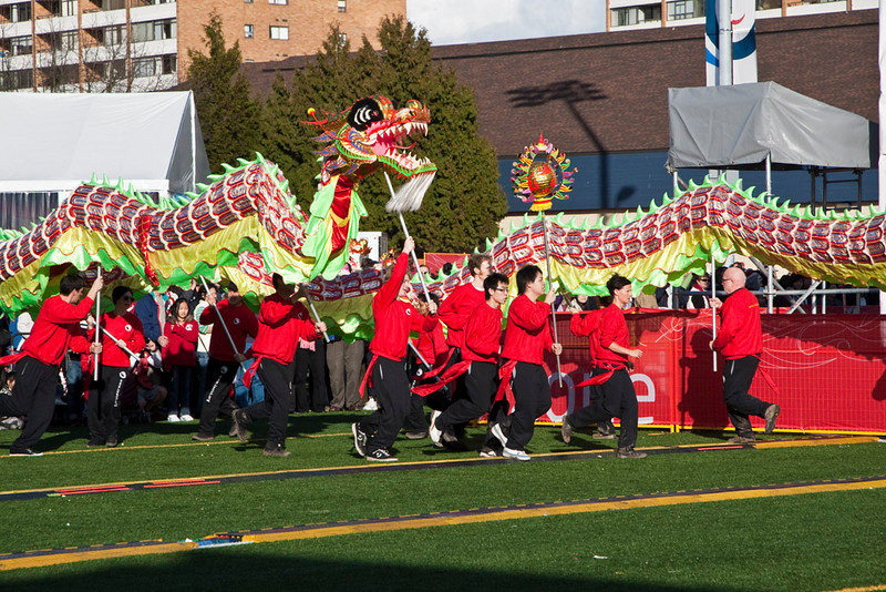 The World's largest Dragon arrives in the O-Zone