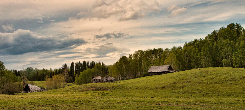 An abandoned Farmhouse and Barns tell the story of yet another family farm that has been left to decay and eventually dissapear. Shot near Prince George BC, June, 2012. A Farmscape that tells the story of the deline in family farming quite clearly.