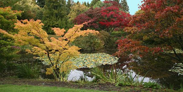 VanDuesen Gardens, Vancover BC