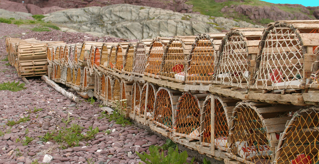Lobster Pots at Tickle Cove, Newfoundland Canada