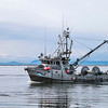 Pacific Discovery - Steveston Harbour, Richmond, BC
