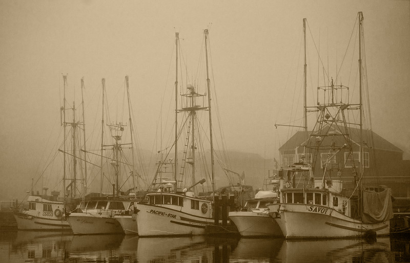 Steveston Harbour, and a few Fishing Vessels in morning Fog