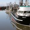 Vanisle - Fishing Fleet - Steveston Harbour BC