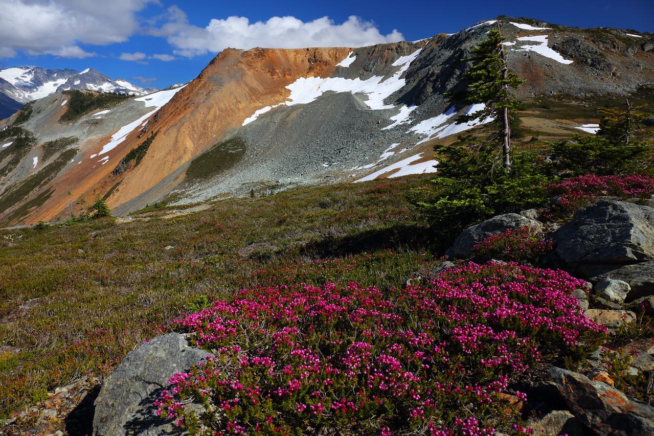 High Note Trail, Whistler, British Columbia
