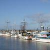 Steveston Fishing Fleet