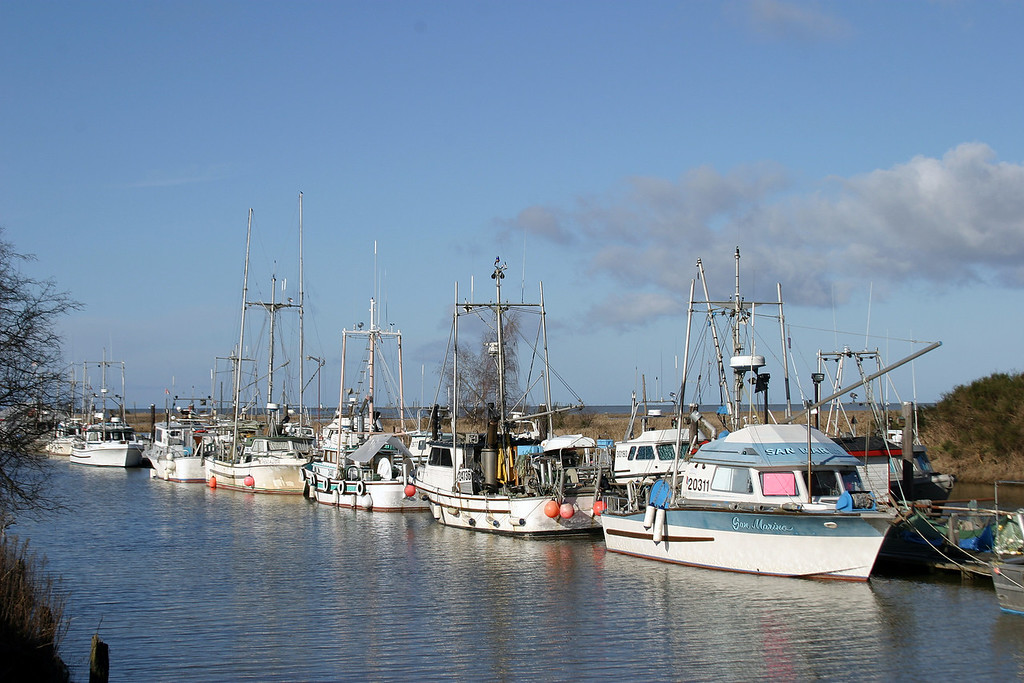 Steveston Fishing Fleet