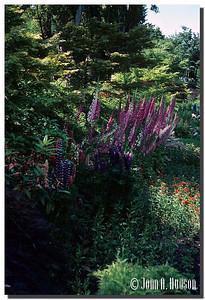 1928_BC-1-0079-NCS-BritishColumbia : Butchart Gardens, Brentwood Bay, Vancouver Island
