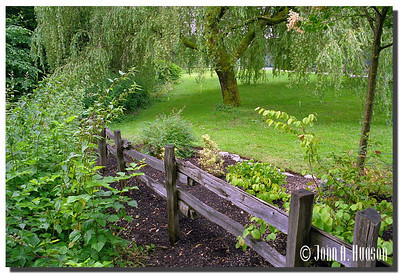 1684_1999020-R3-C2-NCS-BritishColumbia.jpg : Bear Creek Park, Surrey, BC
