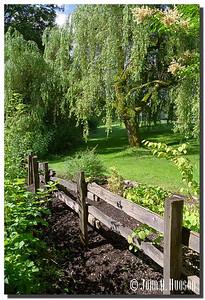 1683_1999019-R1-C1-NCS-BritishColumbia.jpg : Bear Creek Park, Surrey, BC