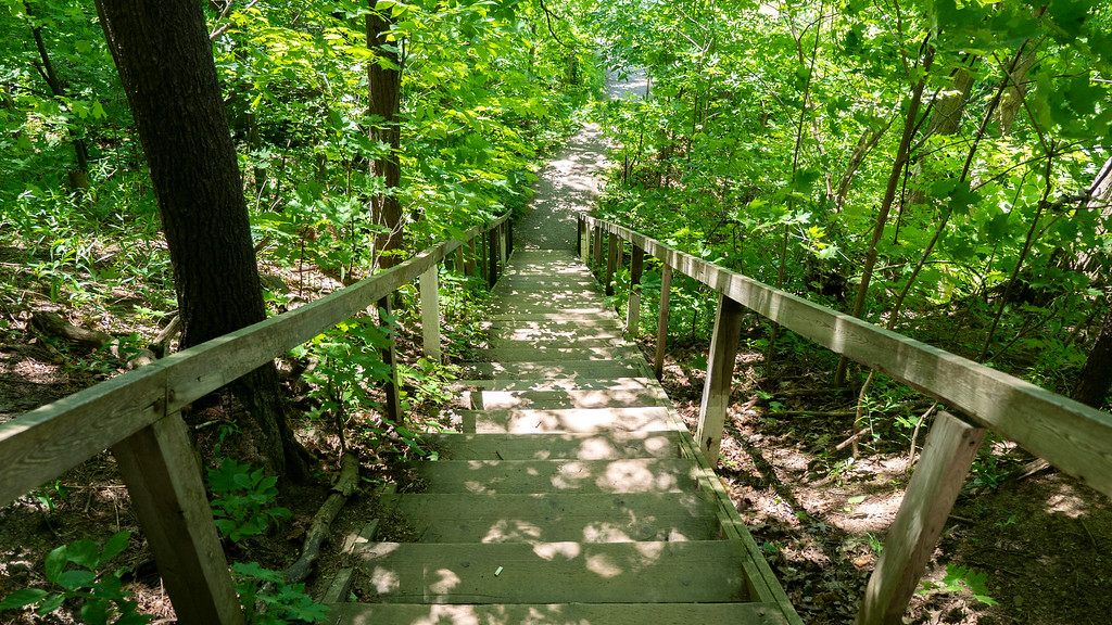 A second staircase on the Bruce Trail to Ball's Falls Conservation Area