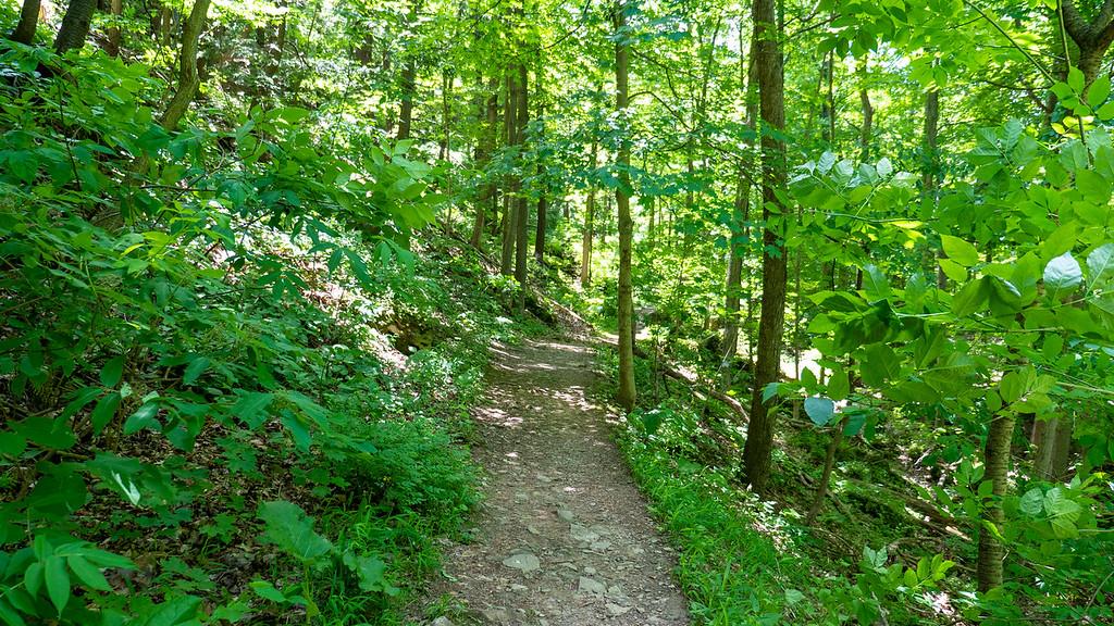 The Bruce Trail in the Niagara Club