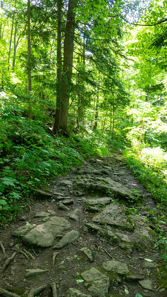 Bruce Trail and Twenty Valley Gorge, Niagara