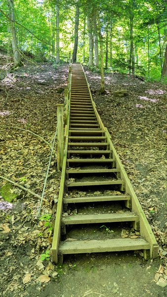 Staircase of Bruce Trail at Ball's Falls