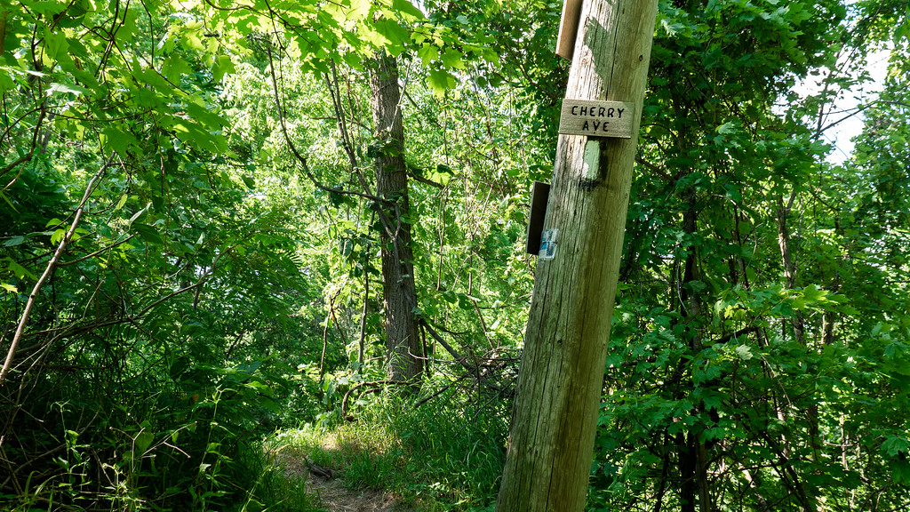 Hiking the Bruce Trail in Niagara wine country - Cherry Ave