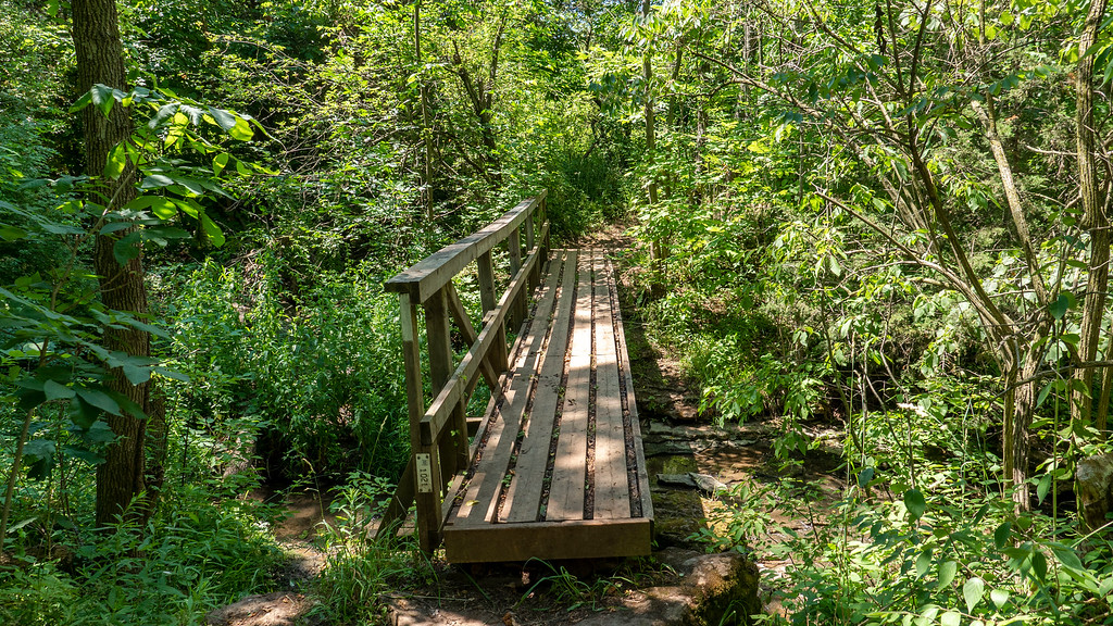 Wooden bridge on the Bruce Trail