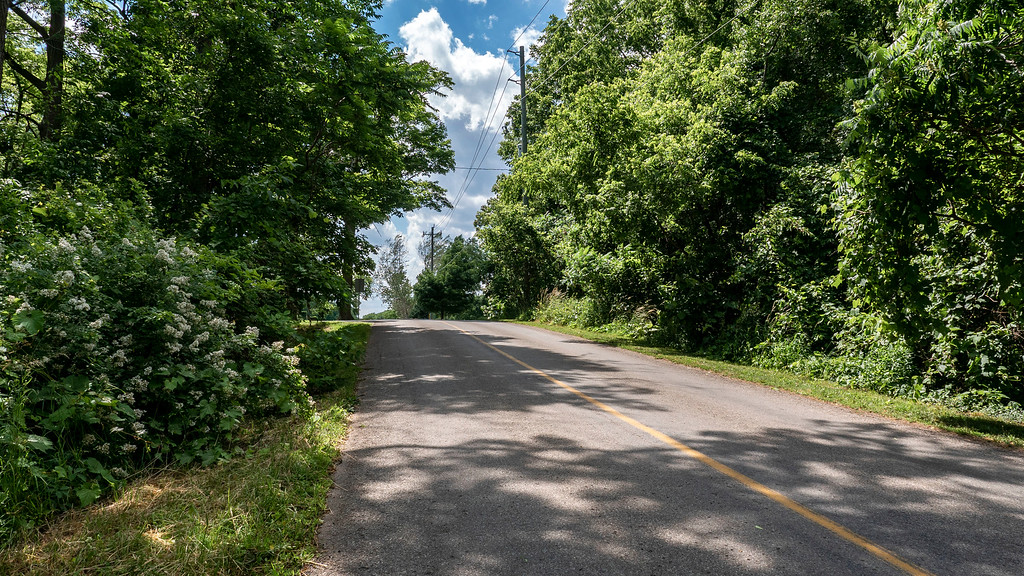 Hiking the Bruce Trail in Niagara wine country: Moyer Road