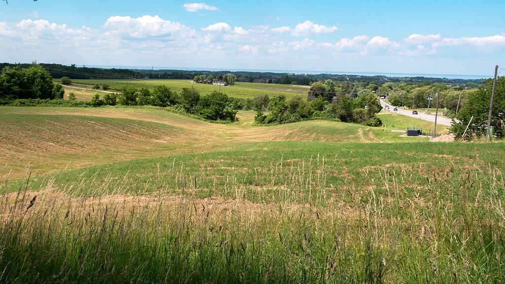 Meadows and farmland in Vineland Ontario
