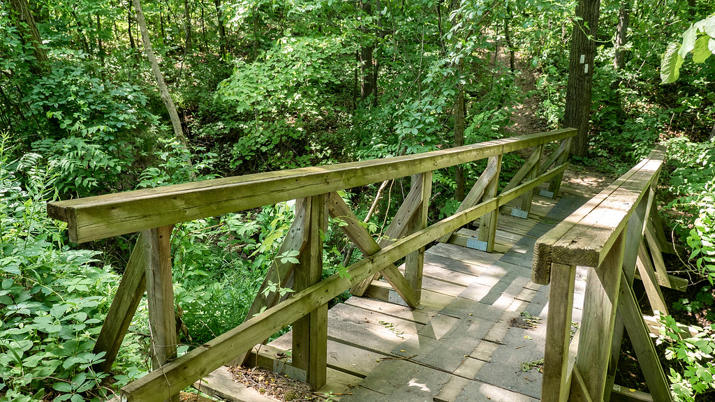 Wooden bridges on the Bruce Trail in Niagara
