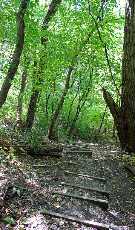 Hiking through the forest and down steps, Ontario Canada