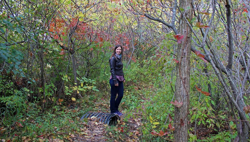 Hiking the Bruce Trail in the Niagara Club