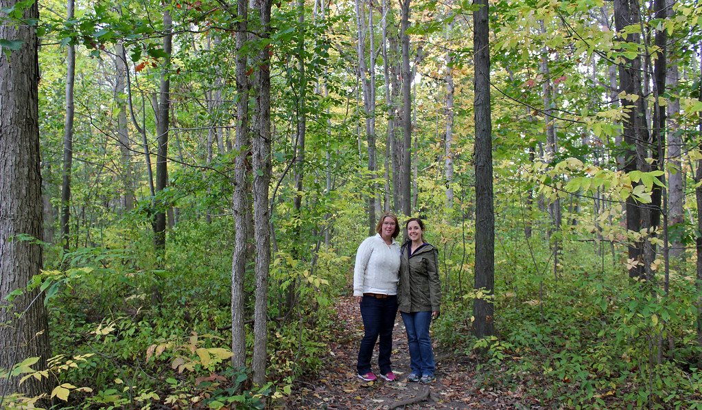The Bruce Trail - hiking through the forest in Niagara Falls