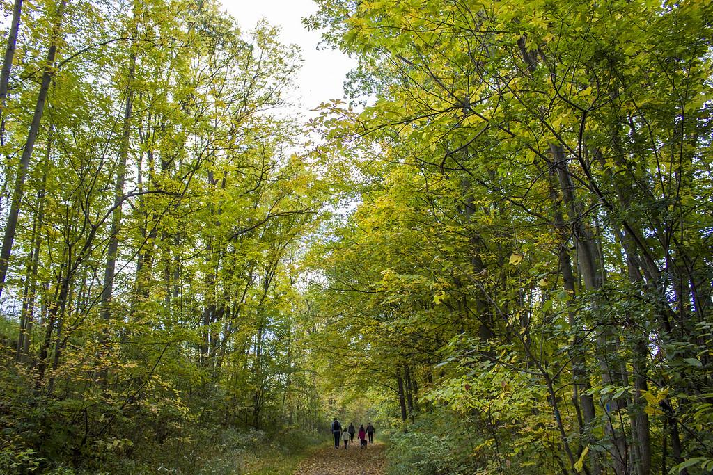 Short Hills Provincial Park hiking trails