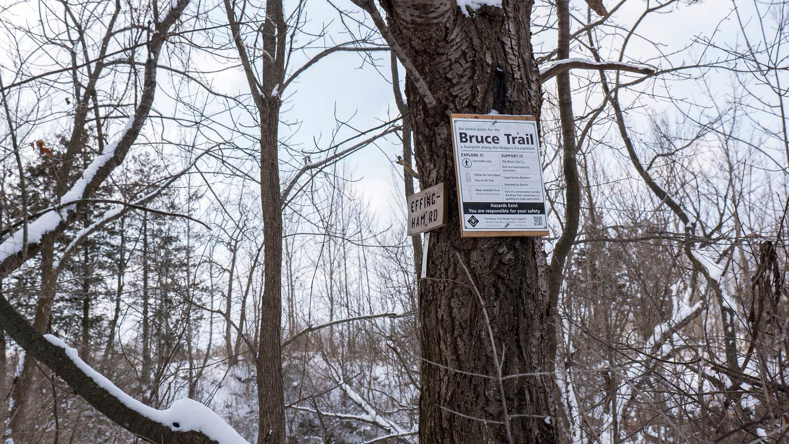 Short Hills Provincial Park Winter Hiking - Bruce Trail Hike #8
