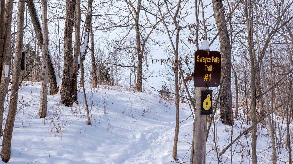 Swayze Falls Trail at Short Hills Park