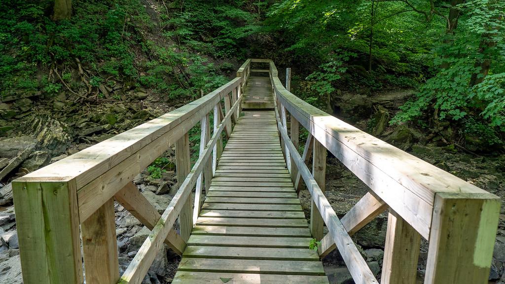 Bridges on the Bruce Trail