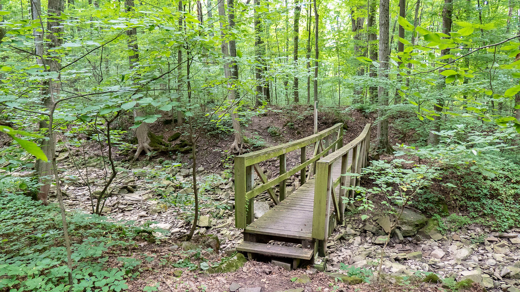 From Seventeenth Street to Glen Road on the Bruce Trail