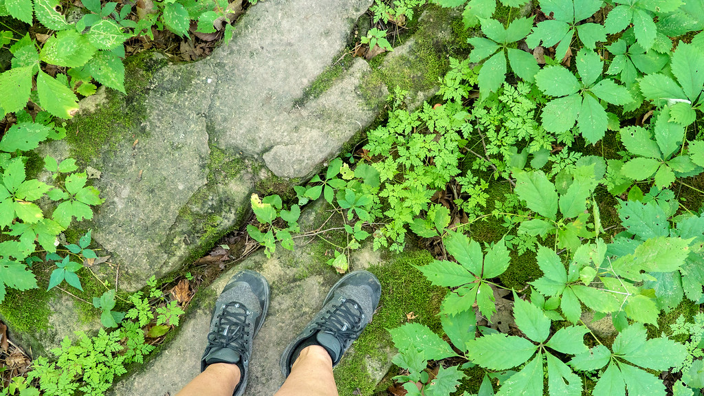 Hiking the Bruce Trail in Ontario