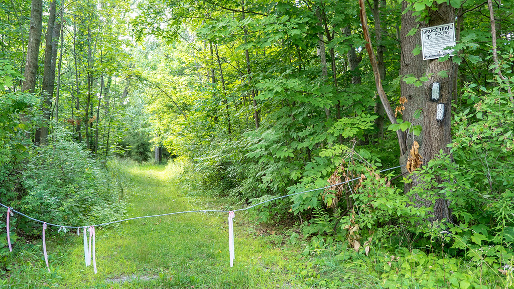 Access to the Bruce Trail in Jordan Ontario